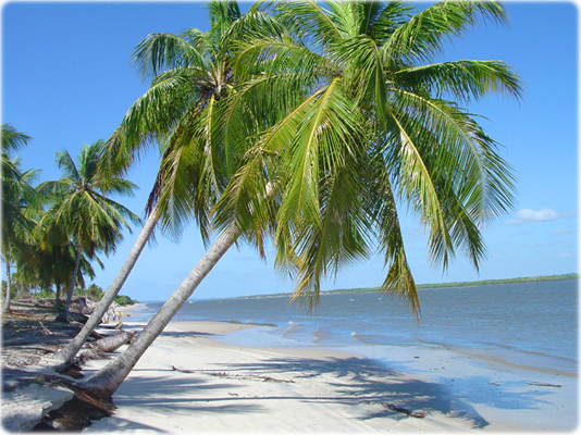 Jandaíra Bahia fonte: www.bahia-turismo.com